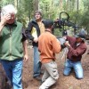 Screening At Calaveras Big Trees