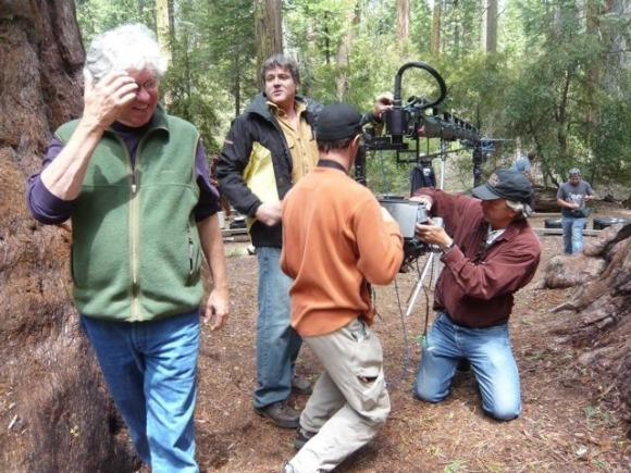 Screening At Calaveras Big Trees