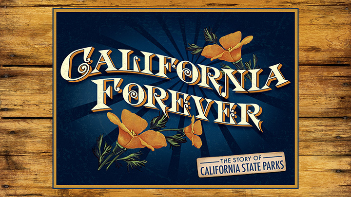 California Forever Key Art
